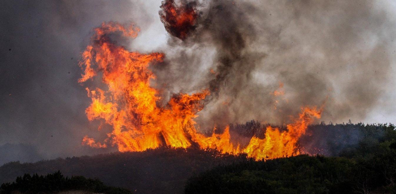 Φωτιά στην Άσκρη του Δήμου Αλιάρτου – Θεσπιέων (ΦΩΤΟ)